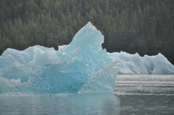 Blog_07.16_Alaska (10)